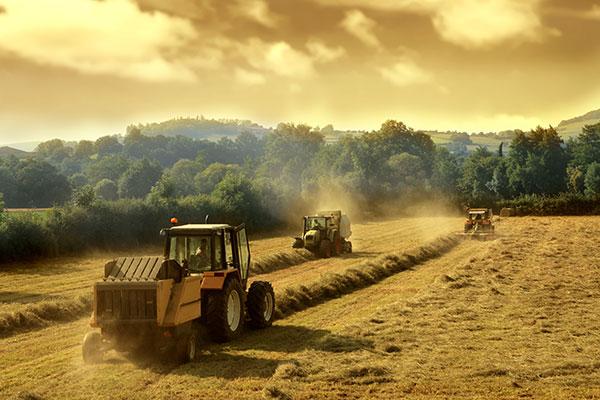 gasolio-agricolo